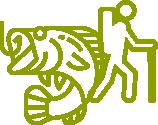 Ruunaan retkeilykeskus - Aktiviteetit
